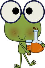 science frog