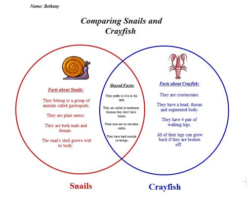 Vennn Diagram Comparing Snails and Crayfish