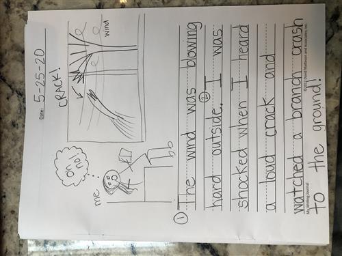 Mrs. Fox's example