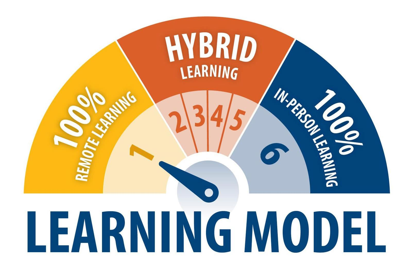 learning model 1 100% remote learning