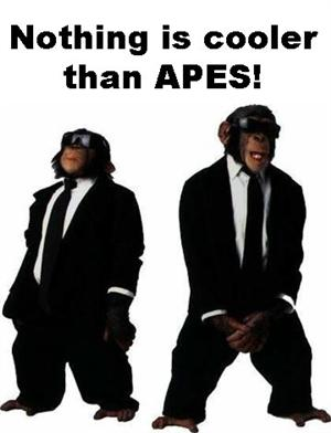 nothing is cooler APES