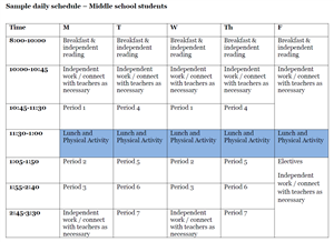 Online Sample Schedule