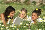 Girls reading in the grass
